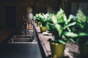LEDs Are Perfect for Indoor Gardening: Here Are 3 Reasons Why Scottsdale